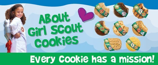 2020 Cookie Landing Page Banners